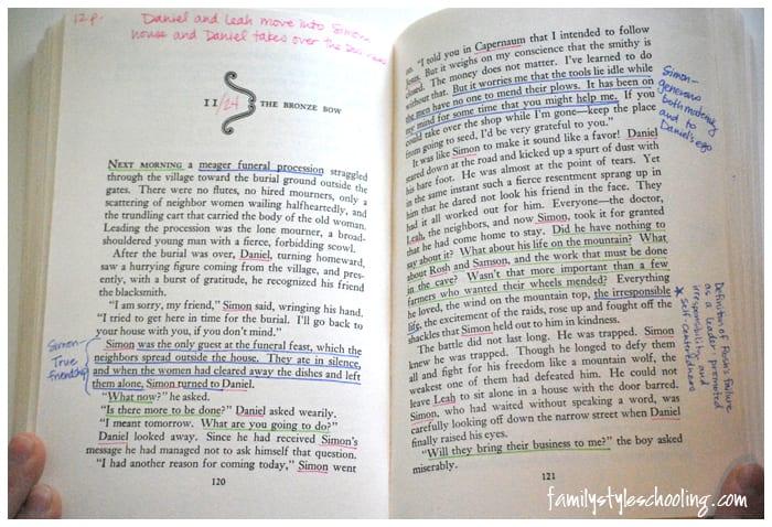 highlighting system thinking reading