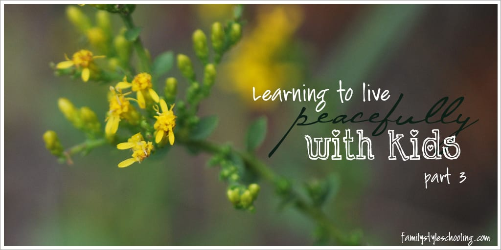 Learning to Live {Peacefully} With Kids Part 3