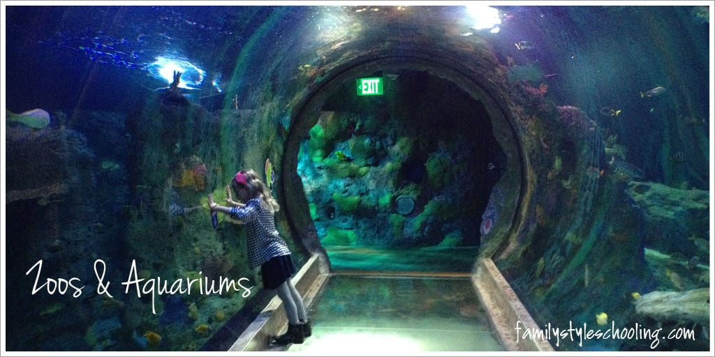 Observe nature in zoos and aquariums