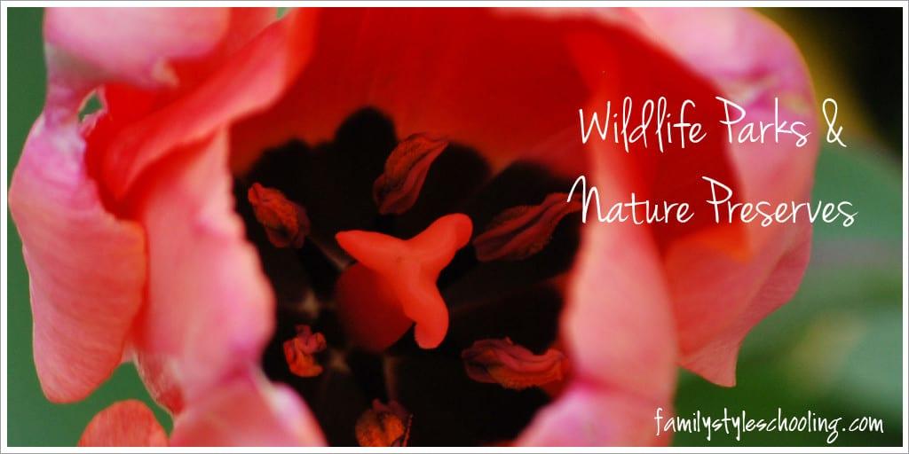 observe nature at wildlife parks