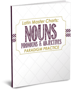 Latin Nouns Pronouns and Adjectives PNG
