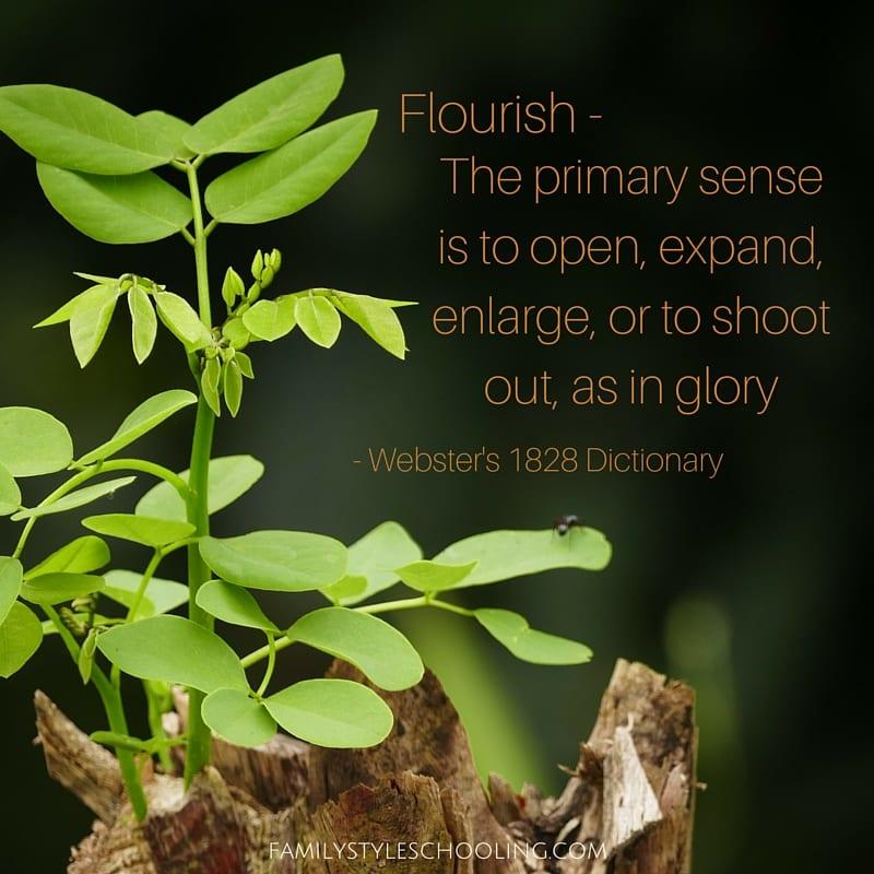 Flourish definition
