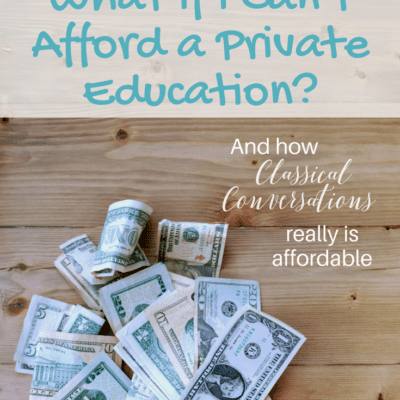 Homeschool Fear: What if I can't afford a private education?