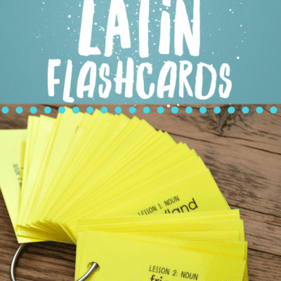 Henle's 1st Year Latin Vocabulary Keyring Flashcards