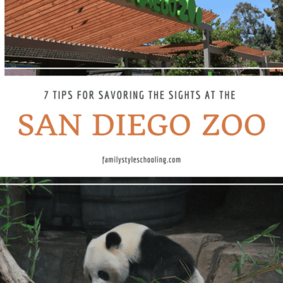 7 Tips for Savoring the Sights at the San Diego Zoo