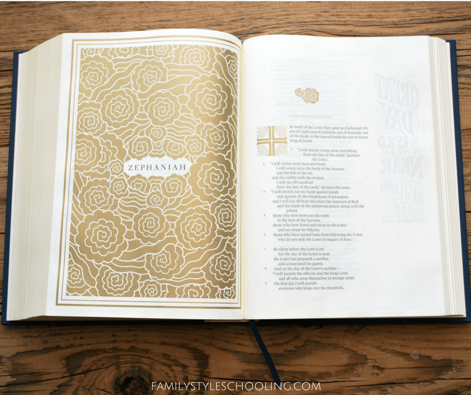 The New ESV Illuminated Bible Review and Giveaway - Family
