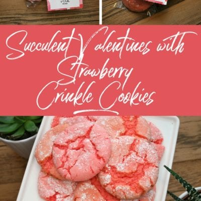 Succulent Valentines with Strawberry Crinkle Cookies