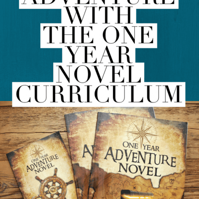 Our Adventure with the One Year Adventure Novel Curriculum